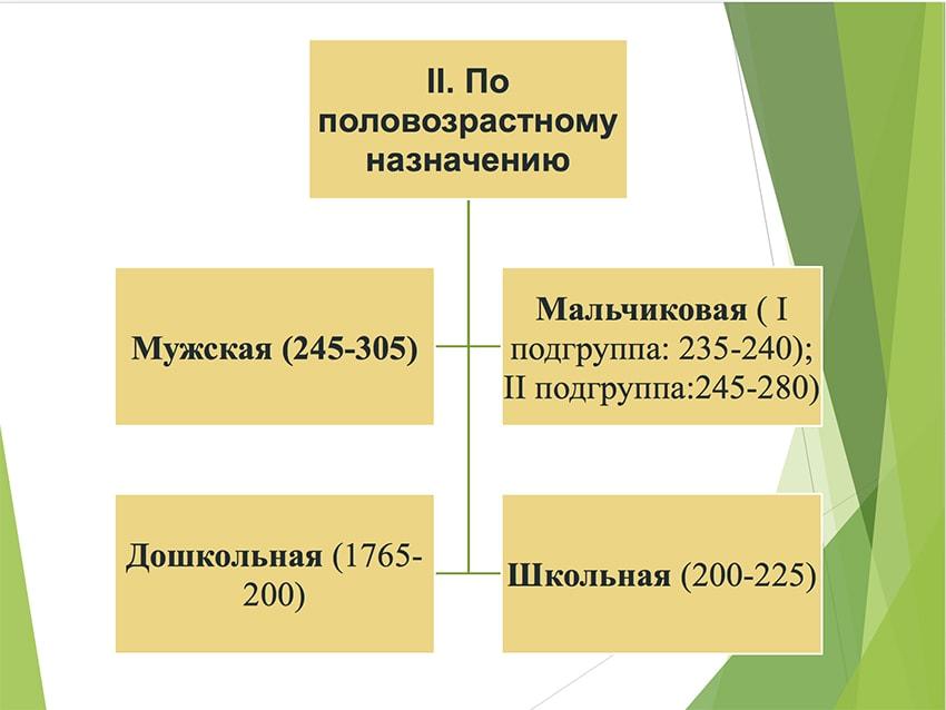 Презентация берцев № 16