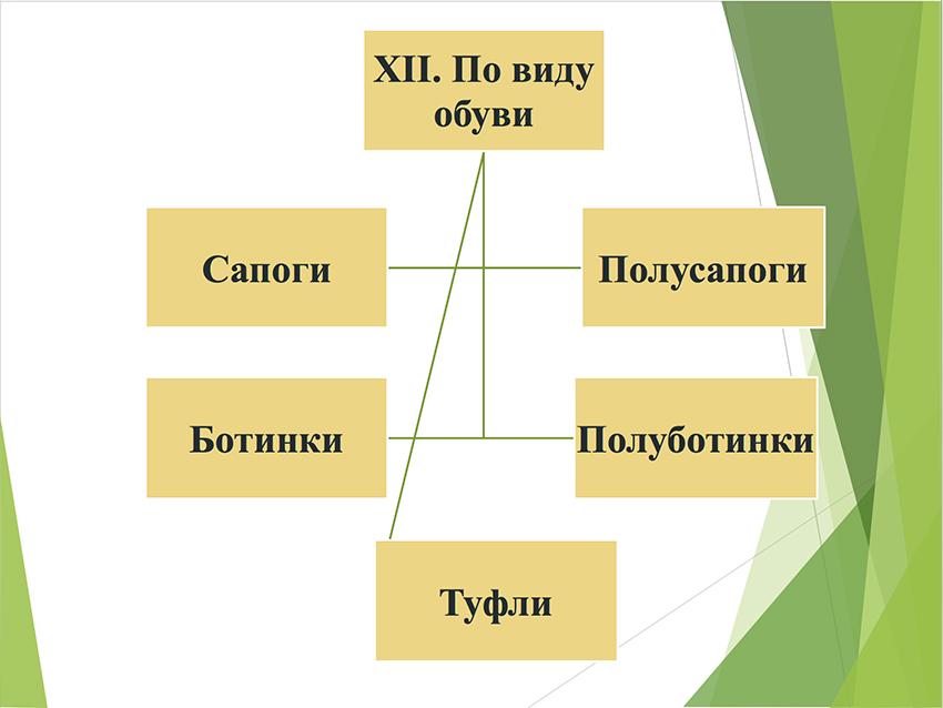 Презентация берцев № 24